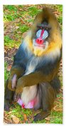 Mandrill Beach Towel