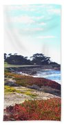 17 Mile Drive Shore Line II Beach Towel
