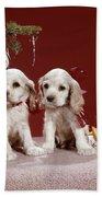 1960s Two Cocker Spaniel Puppies Beach Sheet