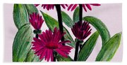 African Daisies Beach Sheet
