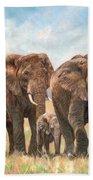 African Elephants Beach Towel