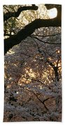 Angry Trees At Sunset Beach Towel