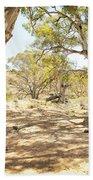 Australian Outback Oasis Beach Towel