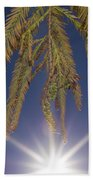 Autumn Coniferous Beach Towel