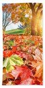 Autumn Fall Landscape In Park Beach Towel