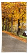 Autumn Road Beach Towel by Brian Jannsen