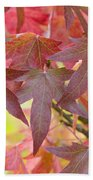 Autumnal Liquidambar Leaves Beach Towel