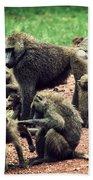 Baboons In African Bush Beach Towel