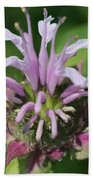 Bee Balm From The Panorama Mix Beach Towel