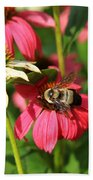 Bee Nice Beach Towel