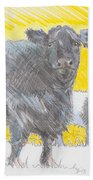 Belted Galloway Cows Beach Towel
