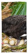Black Swan At Nest Beach Towel