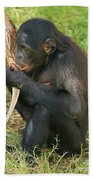 Bonobo Beach Towel