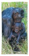 Bonobo Mother And Baby Beach Towel