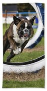 Boxer Dog Beach Towel