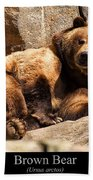 Brown Bear Beach Towel by Chris Flees
