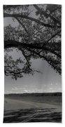 Burr Oak Tree Beach Towel