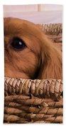 Cavalier King Charles Spaniel Puppy In Basket Beach Towel