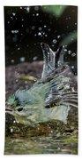 Cerulean Warbler Beach Towel