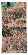 Cherry Blossoms In Pink And Brown Beach Towel