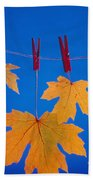 Close-up Of Fall Colored Maple Leaves Beach Towel