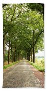 Cobblestone Country Road Beach Towel by Carol Groenen