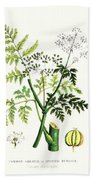 Common Poisonous Plants Beach Towel by English School