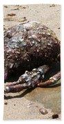 Crab Beach Beach Towel