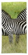 Crisscross Stripes Beach Towel