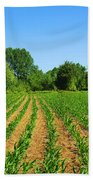 Cultivated Land Beach Towel