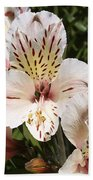 Desert Willow Beach Towel