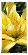 Double Asiatic Lily Named Fata Morgana Beach Towel