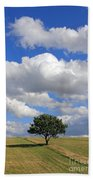 Dramatic Clouds And The Tree Beach Towel
