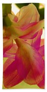 Easter Cactus Beach Towel