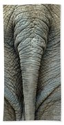 Elephant's Tail Beach Towel