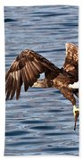 European Fishing Sea Eagle 4 Beach Towel