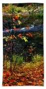 Fall Forest And River Beach Towel