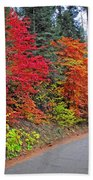 Fall's Splendor Beach Towel