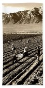 Farm Workers And Mt Williamson 1940s Beach Towel