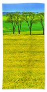 Fields Of Dreams Beach Towel