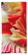 Flaming Parrot Tulip Beach Towel