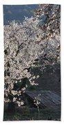 Flowering Almond Beach Towel