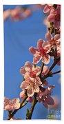 Flowering Peach Tree Beach Towel