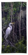 Lowcountry Marsh White Heron Beach Towel