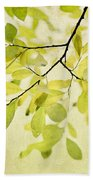 Green Foliage Series Beach Sheet