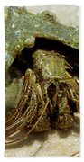 Green Striped Hermit Crab Beach Towel