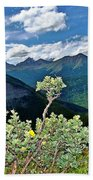 Hardy Shrub Beach Towel