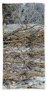 Ice Storm Poplars Beach Towel