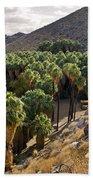 Indian Canyons - California Beach Towel