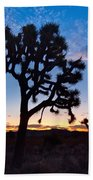Josua Trees Beautifully Lit During Sunrise In Joshua Tree Nation Beach Towel